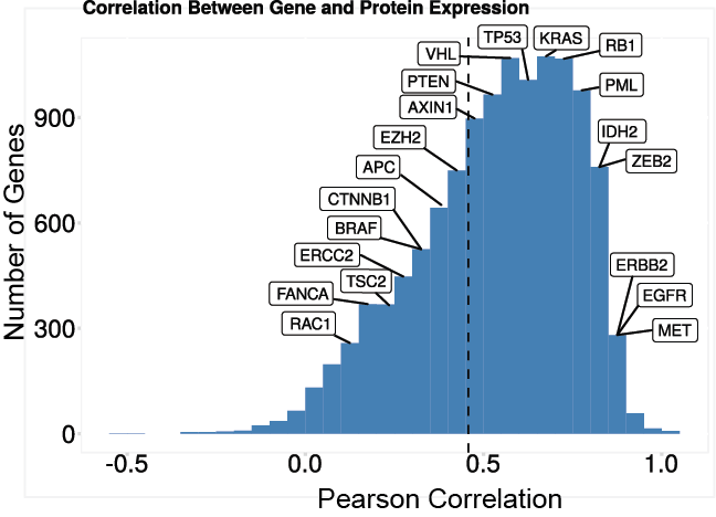 Global distribution of correlation between RNA and protein varies widely per gene